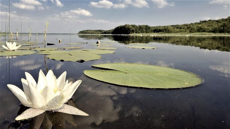 Nicht zu schön um wahr zu sein: Blick auf einen der wunderbaren Klarwasserseen des Naturparks. Foto: Archiv Nordkurier