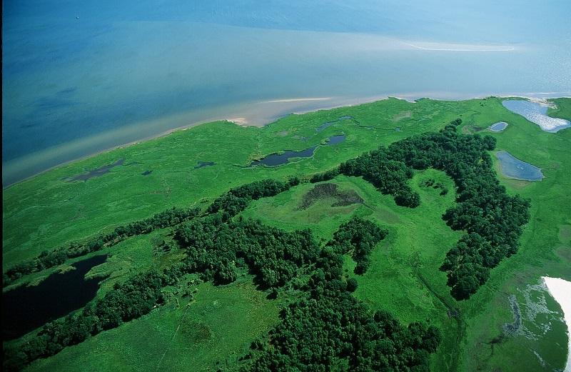 Wind und Meer formen die Landschaft. © Norbert Rosing_DBU Naturerbe