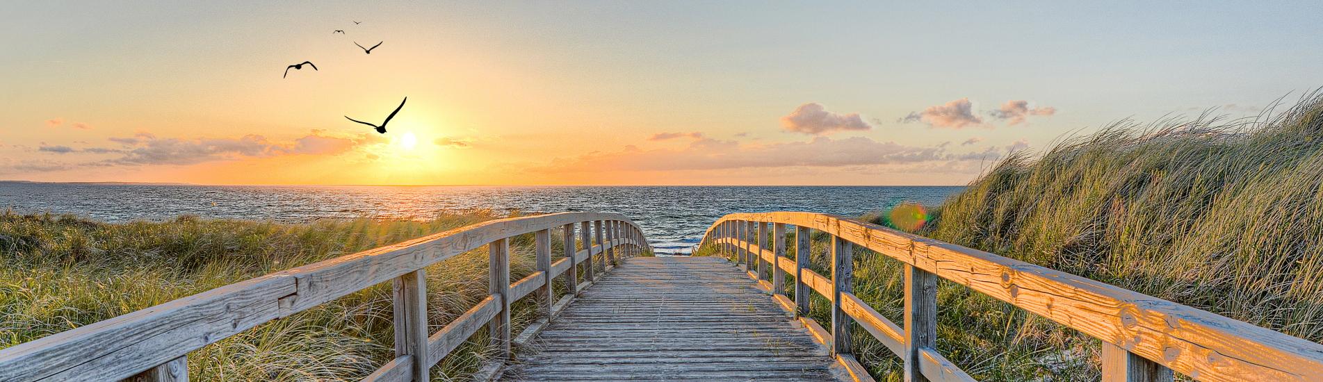 Ihr Urlaubsportal für Mecklenburg – Vorpommern